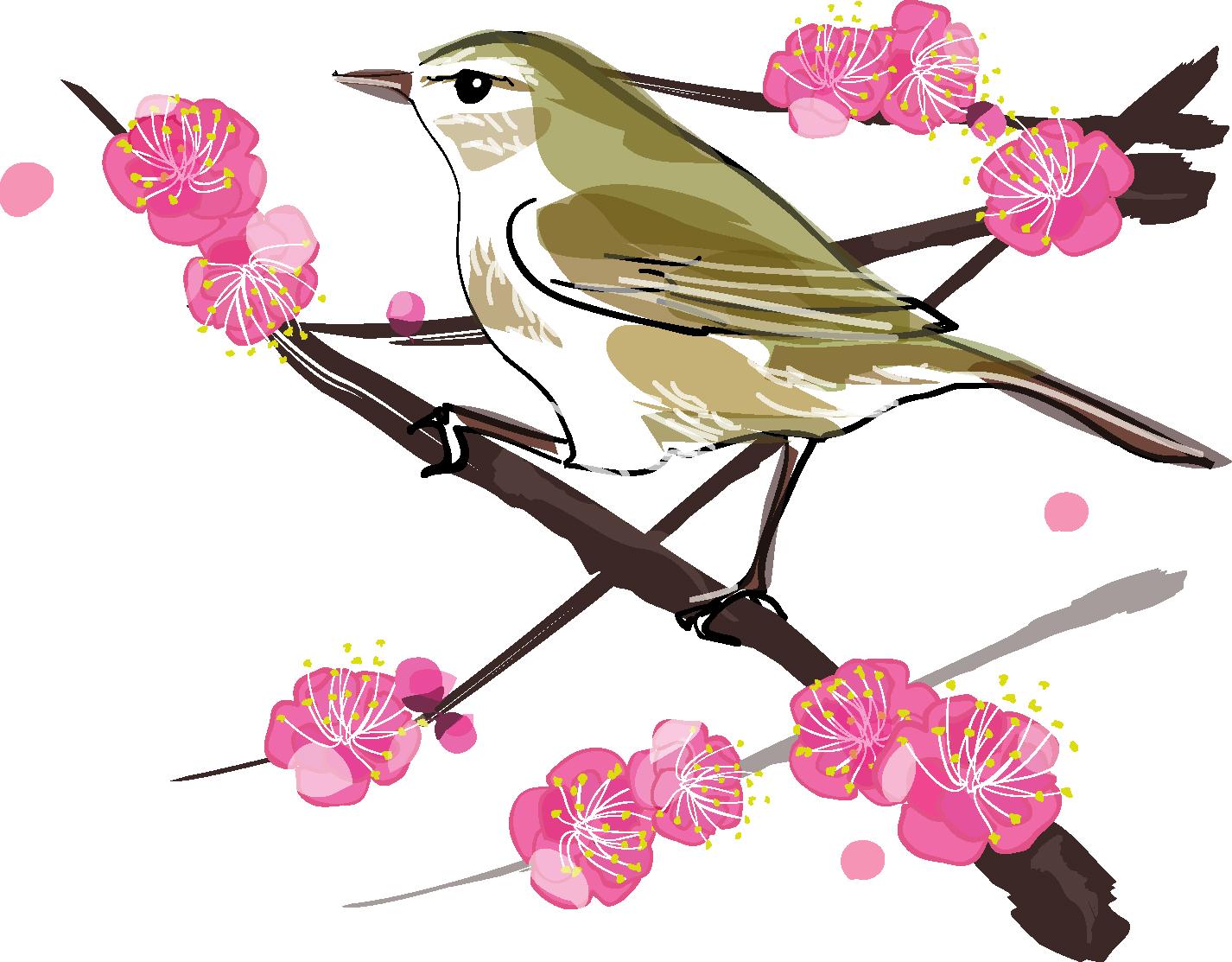梅に鶯-ダウンロード|かわいい無料イラスト 印刷素材
