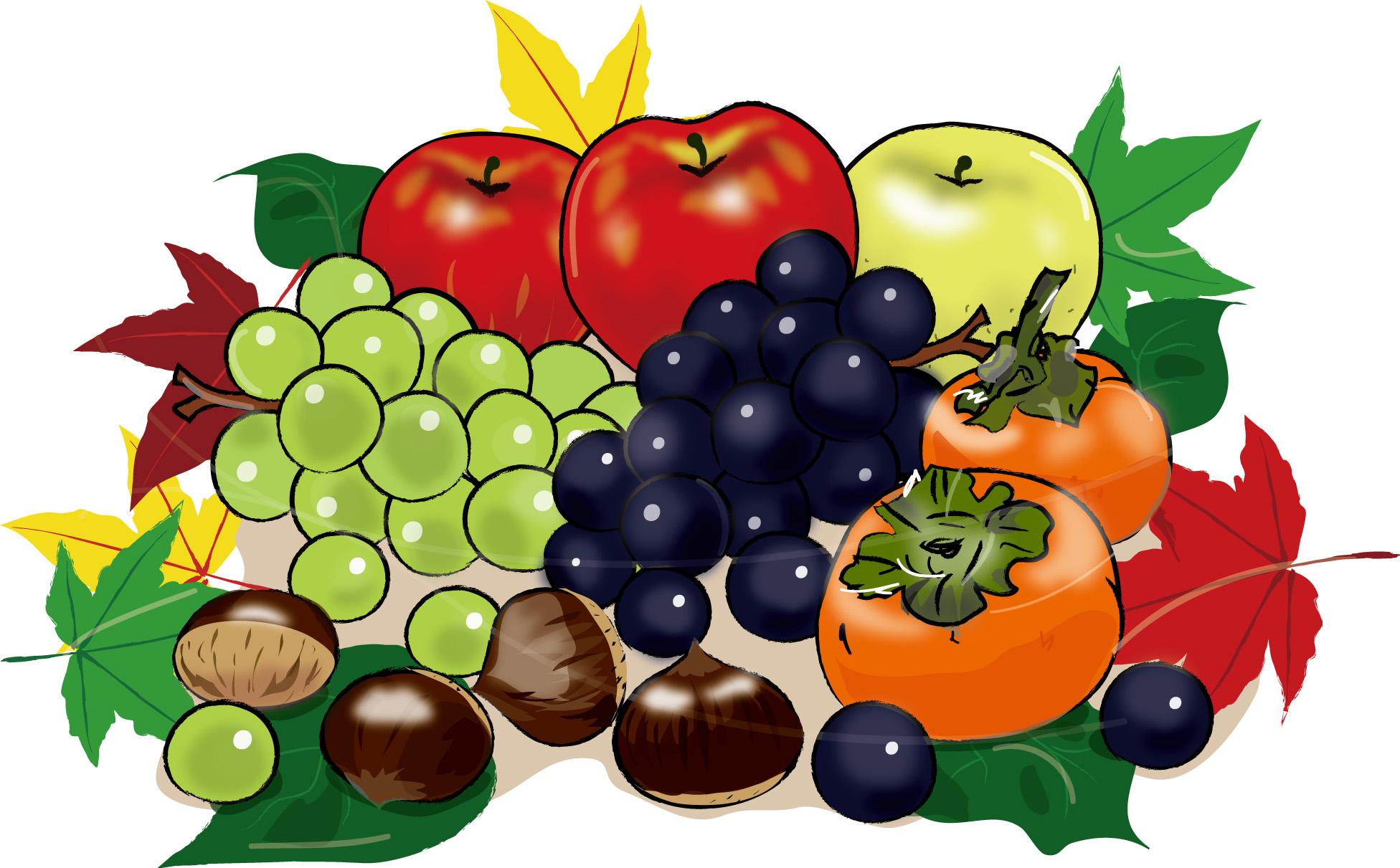 秋の果物1 ダウンロード かわいい無料イラスト 印刷素材 Net