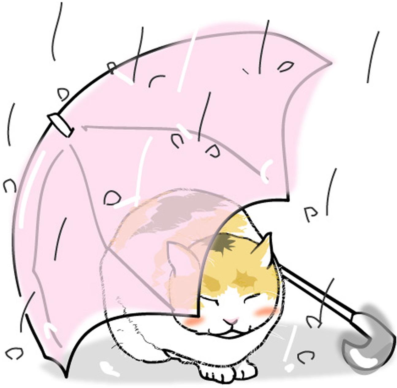 夏の印刷用イラスト素材「動物・夏・雨宿り猫」ダウンロード