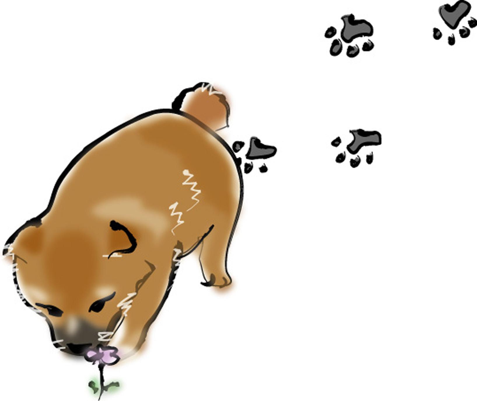 画像 : 【犬好き必見!】色んな種類のかわいい犬のイラスト画像特集